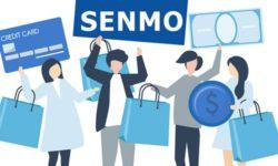 Vay tiền Senmo: thủ tục vay, lãi suất, hạn mức vay 2021