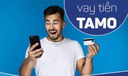Tamo là gì? Vay tiền Tamo có an toàn không?